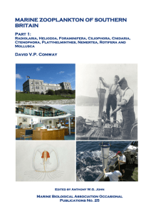 this publication - The Marine Biological Association