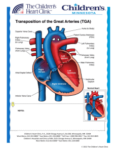 Transposition of the Great Arteries (D-TGA)