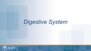 Digestive System - Network Learning Institute