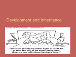 Development and Inheritance