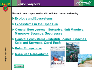 Chapter 16 - Marine Ecosystems