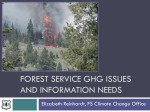 Forest Service needs for GHG modeling