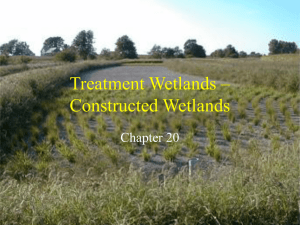 Treatment Wetlands – Constructed Wetlands