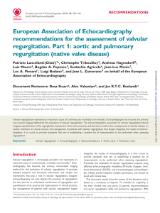 European Association of Echocardiography recommendations for