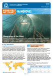 Fisheries Fact Sheet - Mangrove