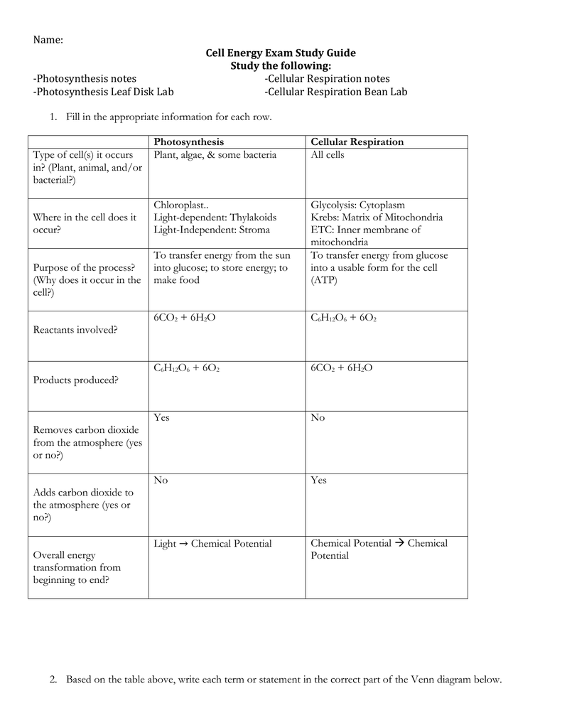 Name Cell Energy Exam Study Guide Study The Following