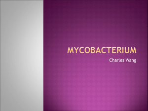 Mycobacterium - Mrs. Yu`s Science Classes