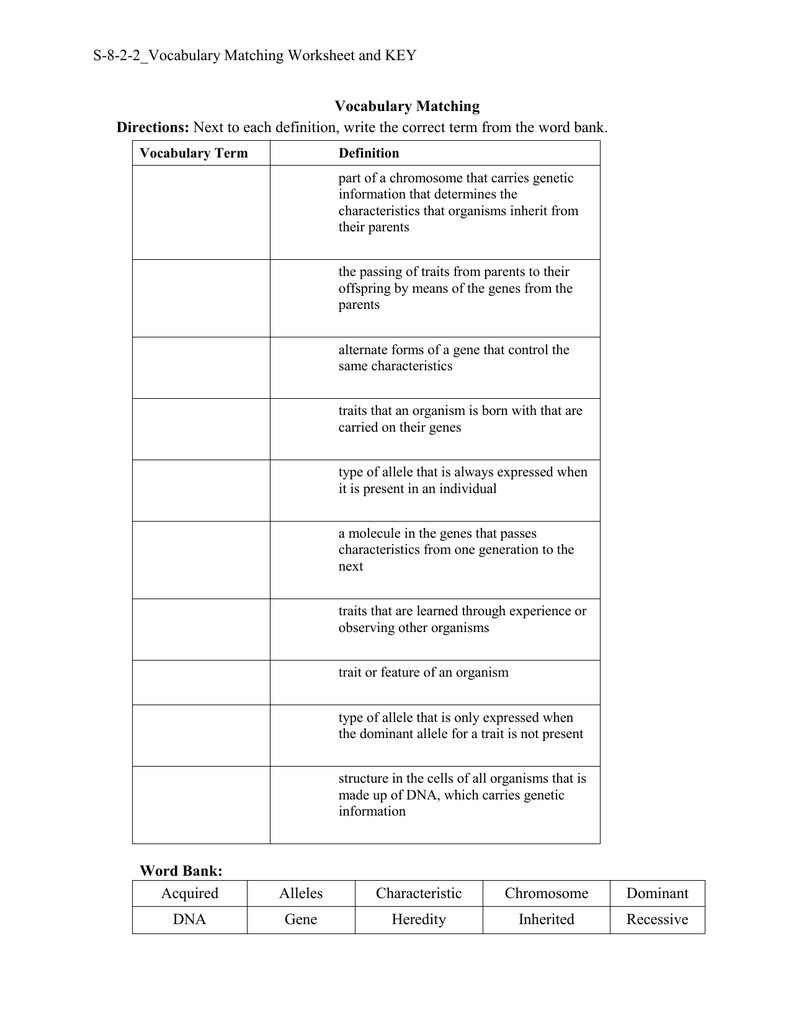 S 8 2 2 Vocabulary Matching Worksheet and KEY Vocabulary