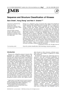 Sequence and Structure Classification of Kinases
