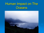 Human Impact on The Oceans