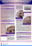 cerebral artery poster - University of Pretoria