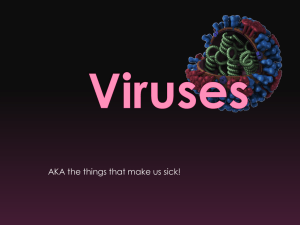 Virus Replication PPT