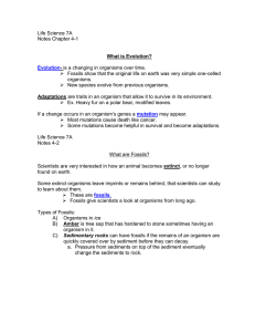 Life Science 7a notes 4