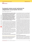 A proposed common neural mechanism for categorization and