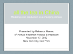 the tea in China Modeling crop production in a changing climate