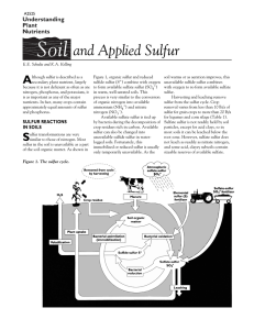 Soil and Applied Sulfur (A2525)