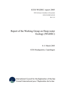 Report of the Working Group on Deep