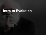 Intro To Evolutionary Process