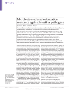 Microbiota-mediated colonization resistance against intestinal