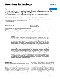 Conservation and co-option in developmental programmes: the