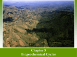 Ch 3 Biogeochemical Cycle ppt