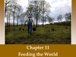Ch 11 Feeding the World Powerpoint Notes