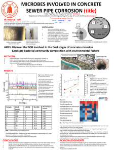 MICROBES INVOLVED IN CONCRETE SEWER PIPE CORROSION