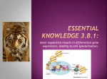 Essential knowledge 3.B.1