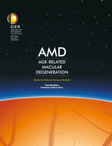 pdf version of the amd book