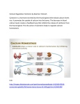 Calcium Regulation Calcitonin by Beatrice Totimeh Calcitonin is a