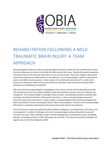 rehabilitation following a mild traumatic brain injury: a team approach