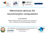 Neuromorphic computation - New Challenges in the European Area