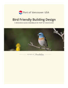 Bird Friendly Building Design