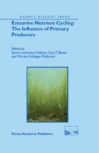 Estuarine Nutrient Cycling - The Influence of