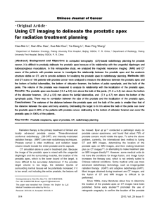 Using CT imaging to delineate the prostatic apex for radiation