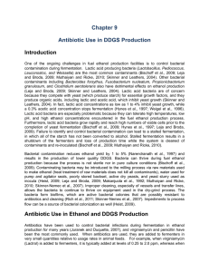Antibiotic Use in DDGS Production