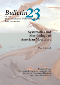 Bulletin 23 - Yale Peabody Museum of Natural History