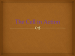 The Cell in Action