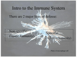 Intro to the Immune System