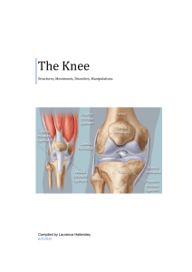 The Knee - Anatomy and Physiology Course Anatomy and