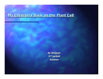My Plant Cell Children`s Book