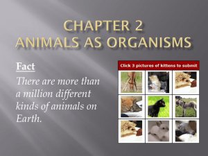 Animals as Organisms chapter_2_animals_as_organisms