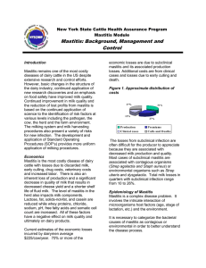 Mastitis - Background and Best Management Practices