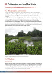 CD accompanying Saltwater Wetlands Rehabilitation Manual