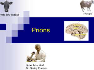 Prions (this will probably be covered in lab on Friday)