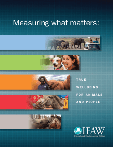 Measuring what matters - International Fund for Animal Welfare