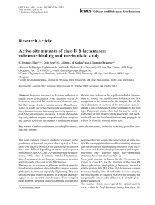 Research Article Active-site mutants of class B b-lactamases