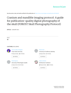 Cranium and mandible imaging protocol