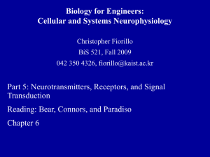 Biology for Engineers: Cellular and Systems Neurophysiology