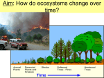 7 - Ecological Succession